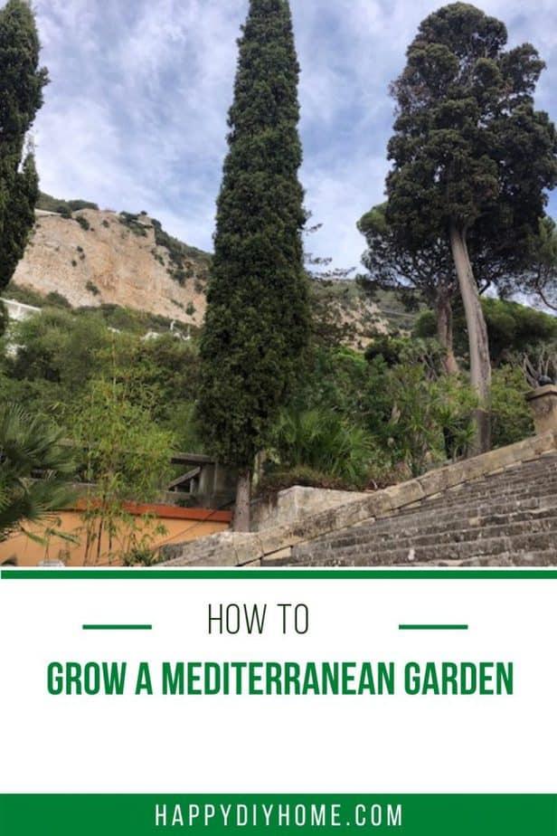 mediterranean garden 1